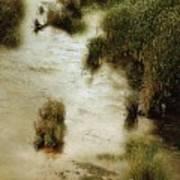 Flood Tide In The Salt Marsh Art Print