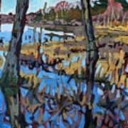 Flooded Land Art Print