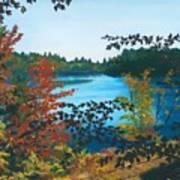 Floodwood Art Print