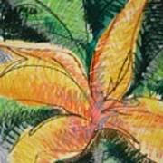 Flora Exotica 2 Art Print
