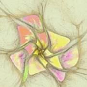 Floral 2-19-10-a Art Print