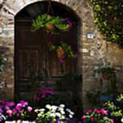 Floral Adorned Doorway Art Print