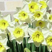 Floral Daffodils Garden Art Prints Floral Bouquet Baslee Troutman Art Print