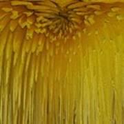 Floral Falls 5 Art Print