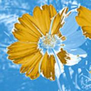 Floral Impression Art Print