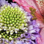 Floral Macro Art Print