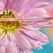 Floral 'n' Water Art 6 Art Print