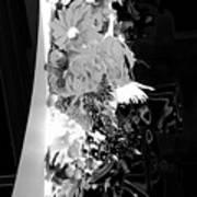 Floral No1 Art Print