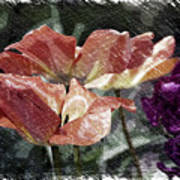 Floral Spring Tulips 2017 Pa 02 Art Print