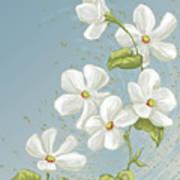Floral Whorl Art Print