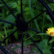 Floral Yellow Peek A Boo Art Print