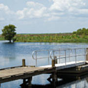 Florida Backwater Art Print