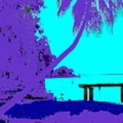 Florida Blues Art Print