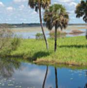 Florida Essence - The Myakka River Art Print