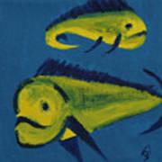 Florida Fish Art Print