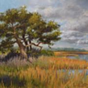 Florida Intercoastal Art Print