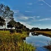 Florida Lands 7 Art Print
