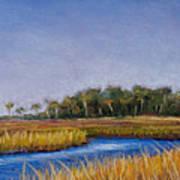 Florida Marsh In June Art Print