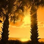 Florida Orange Art Print