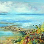 Florida Shore Art Print