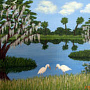 Florida Wetlands Art Print