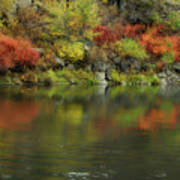 Flow Of Autumn Art Print