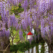 Flower - Wisteria - A House Of My Own Art Print by Mike Savad