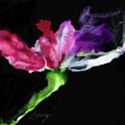 Flower In The Dark 3 Art Print