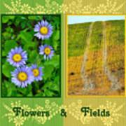 Flower And Fields Art Print