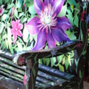 Flower Bench Art Print