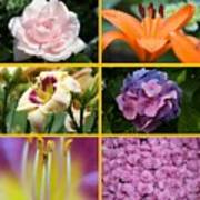 Flower Collage 1 Art Print