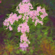 Flower Cross Fancy Art Print