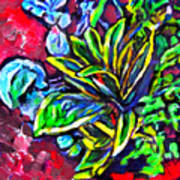 Flower Culture 295 Art Print