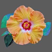 Flower Delight Art Print