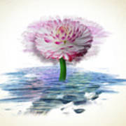 Flower Digital Art Art Print