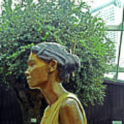 Flower Dome 33 Art Print