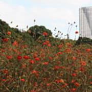 Flower Field In Hama-rikyu Gardens Art Print