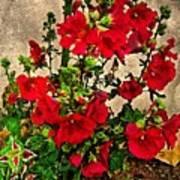 Flower Garden 11 Art Print