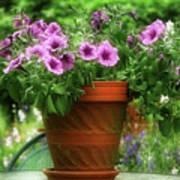 Flower Garden Pot Art Print