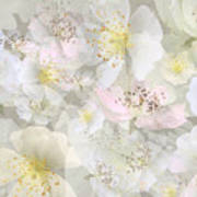 Flower Girls Path Art Print