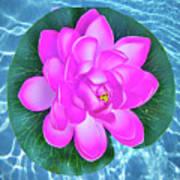 Flower In The Pool Art Print