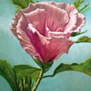 Flower In The Sky Art Print