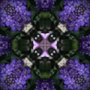 Flower Kaleidoscope_004 Art Print