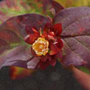 Flower Leaves Art Print
