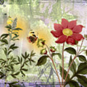 Flower-n Art Print