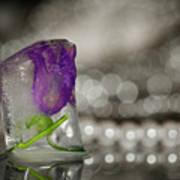 Flower Of Ice Art Print