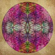 Flower Of Life Art Print by Filippo B