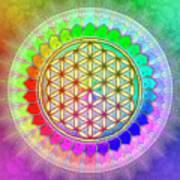 Flower Of Live - Rainbow Lotus 2 Art Print