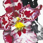 Flower Orchid 11 Elena Yakubovich Art Print by Elena Yakubovich