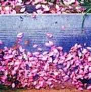 Flower Petals Saturated Ae Art Print